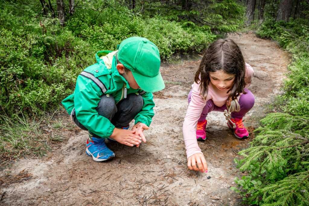Little children boy and girl sitting on forest ground exploring and learning about nature and insects. Looking at a black bug.